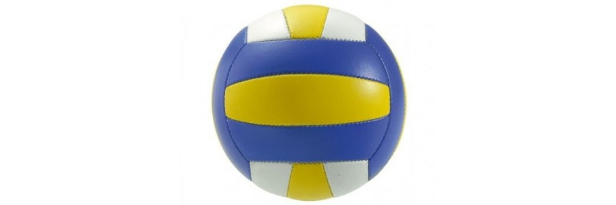 Volley e pallavolo